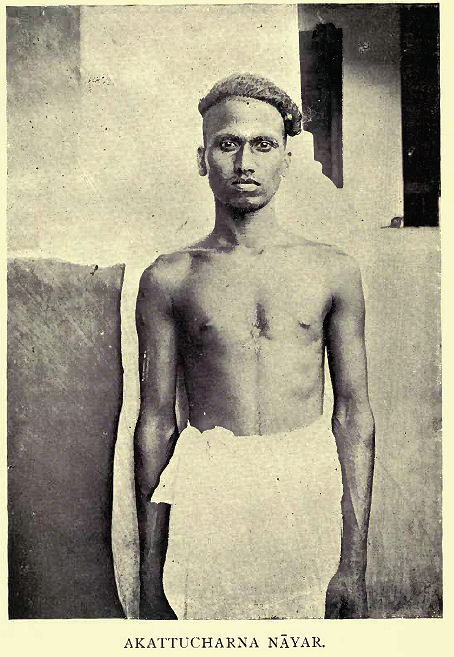 """Mr. N. Subramani Aiyar writes in a note on the Nāyars of Travancore, """"believe that Nāyar is derived from Nāga (serpents), as the Aryans so termed the earlier settlers of Malabar on account of the special adoration which they paid to snakes. The Travancore Nāyars are popularly known as Malayāla Sūdras a term which contrasts them sharply with the Pāndi or foreign Sūdras, of whom a large number immigrated into Travancore in later times."""""""