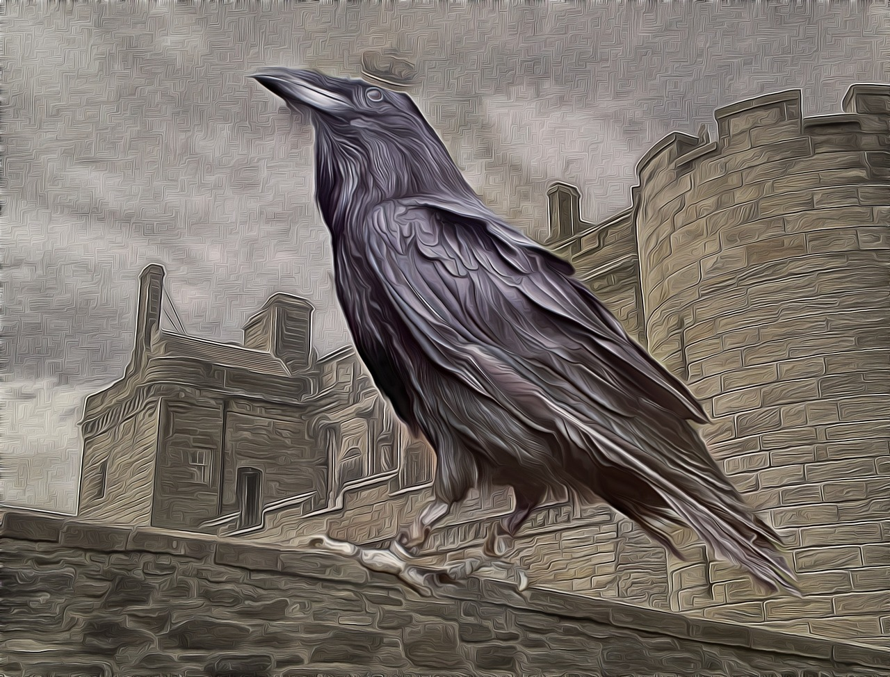 Are Crows Smarter Than Most Americans?